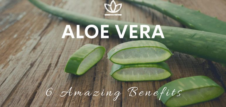 Healthy Benefits of Aloe Vera