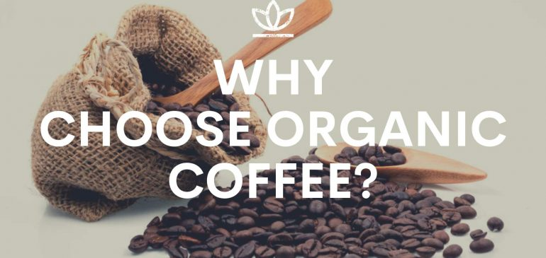 Why Choose Organic Coffee Beans?